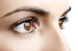 LA Dry Eyes Solutions