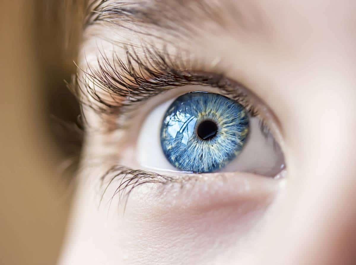 Up close eye shape of blue eyes.